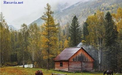Россия - Алтайские каникулы